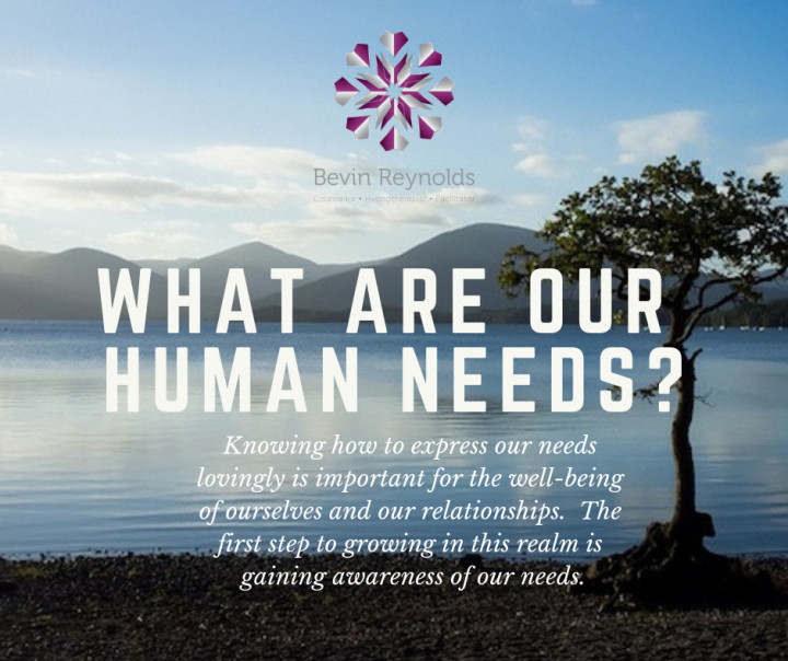 What Are Our Human Needs